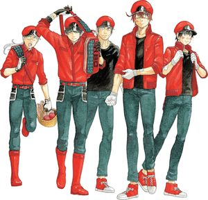 CELLS AT WORK CODE BLACK GN VOL 07 7