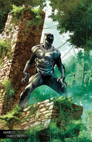 BLACK PANTHER (2017 6TH SERIES) #170 D